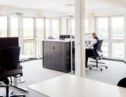 Büro 2 / Entwickler